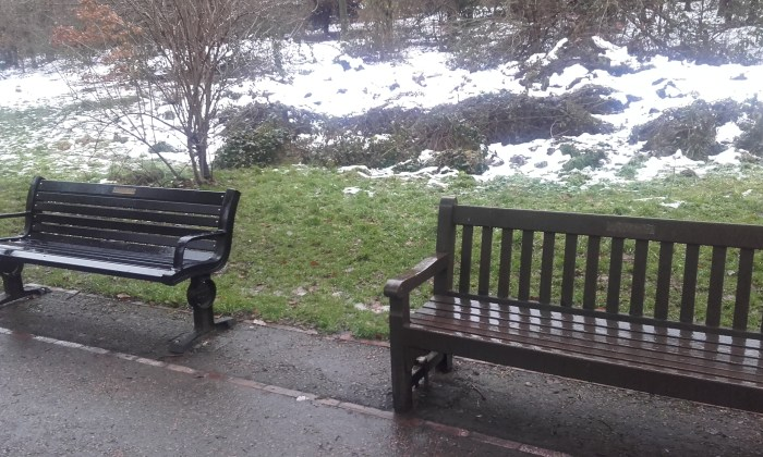 Warley Woods Benches