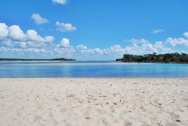 Sandbar in Noosa Spit Recreation Reserve
