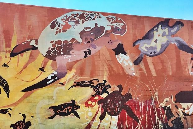 Street Art in Hervey Bay