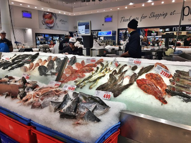 Things to do in Sydney Visit the Fish Market