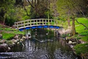 river shot bridge