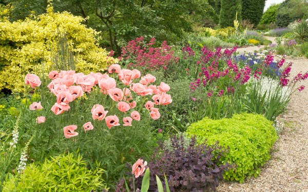 Abundance garden