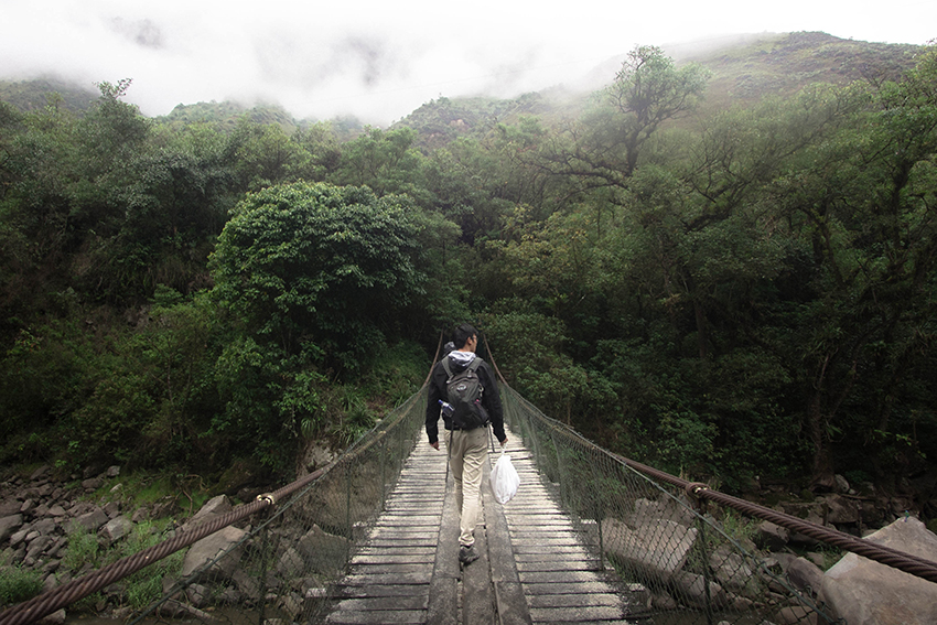 Tourism trends 2020 means more of us are hiking the world's most beautiful rainforests like here in South America