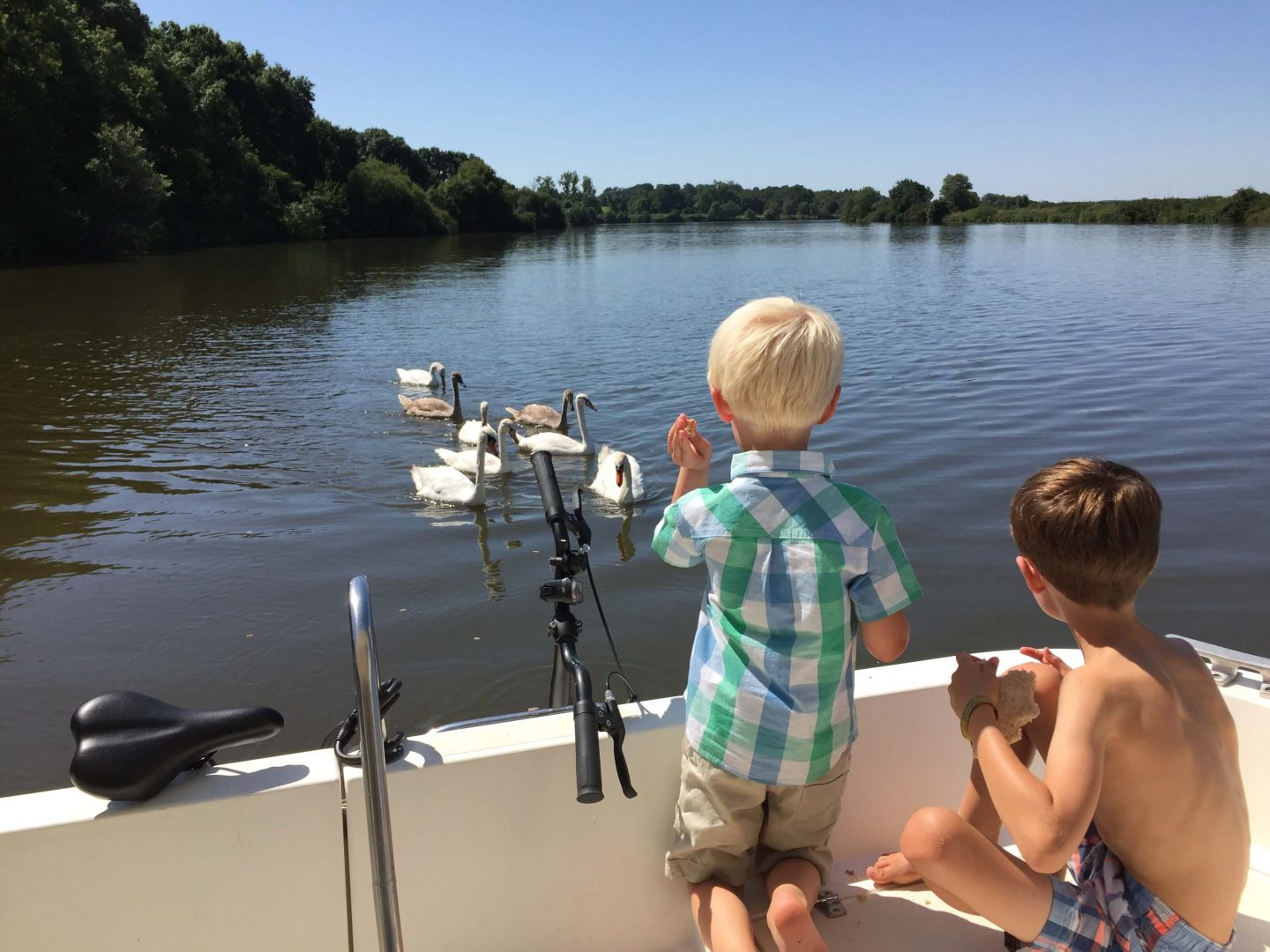 boat holiday with kids feeding swans