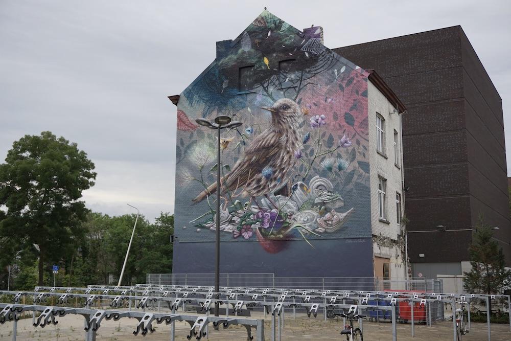Street art Maastricht Nederland