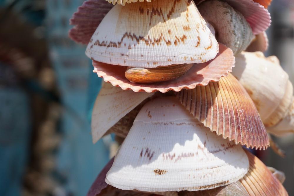 Ibizamarkt Zandvoort Nederland