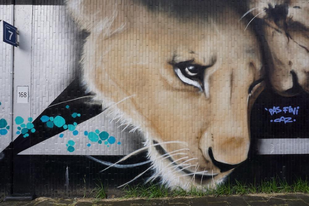 A tribute to Antwerp Caz & Co street art Antwerpen Berchem België