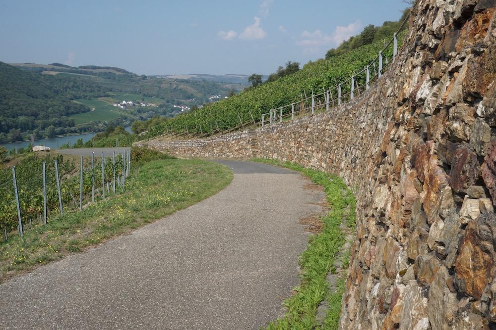 Weinwanderweg Lorch Hessen Duitsland
