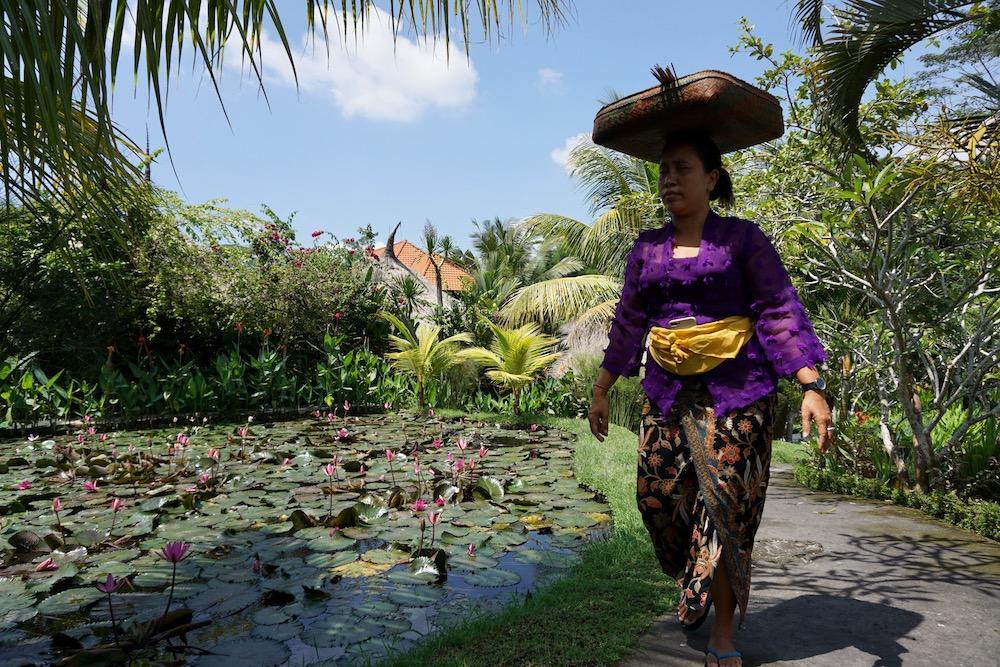 Campuhan Ridge Walk Karsa Spa Ubud bali Indonesië