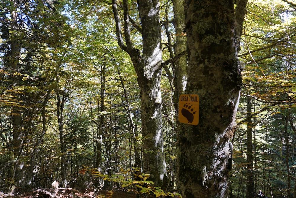 Ursa Trail Metsovo Griekenland