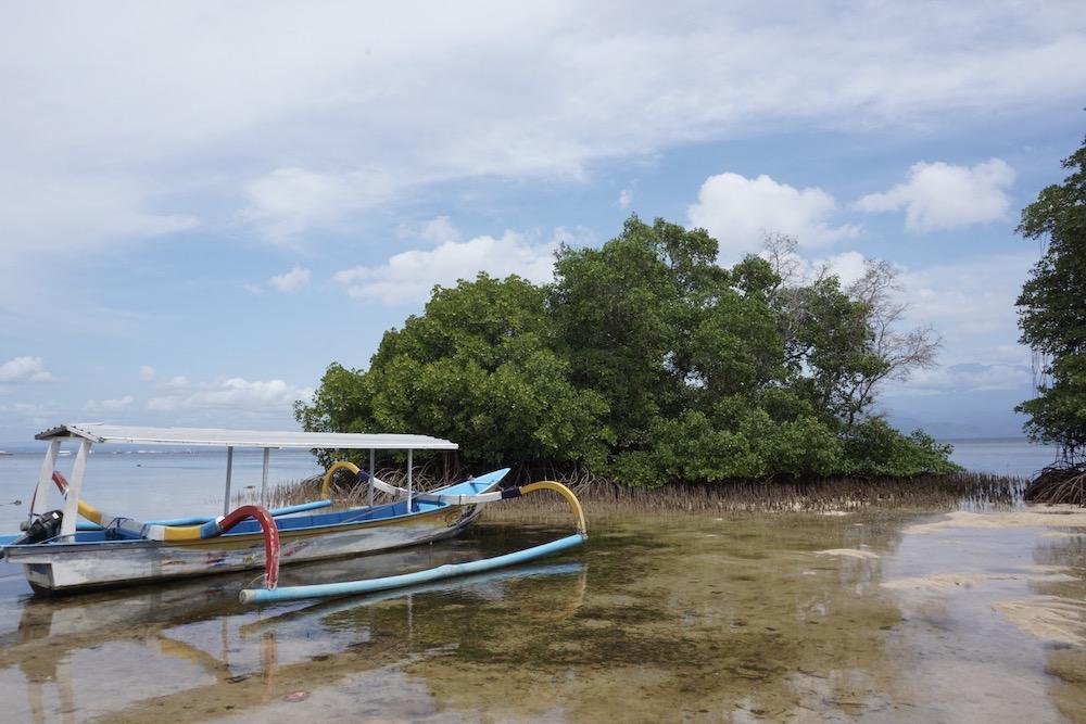 Mangrove Point Nusa Lembongan Bali Indonesië