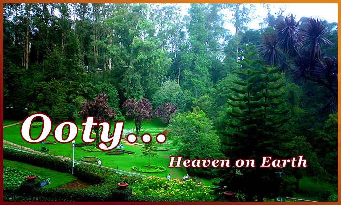 Mysore Ooty 3 Nights  4 Days Tour Package 33