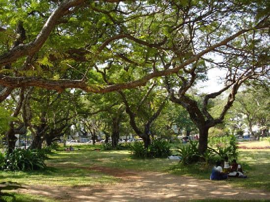 bharati-park