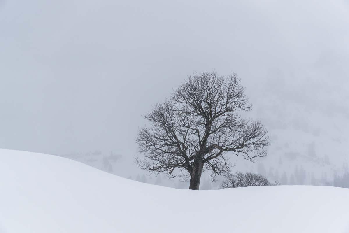 Winterlandschaft rund um die Schwarzenberghütte