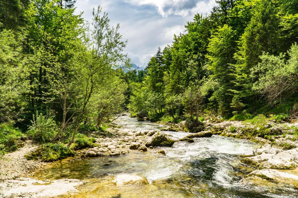 Beim Wandern zum Mostnica Wasserfall kann man am Ufer der Mostnica zurückspazieren