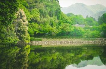 itinéraire-3-semaine-japon-31