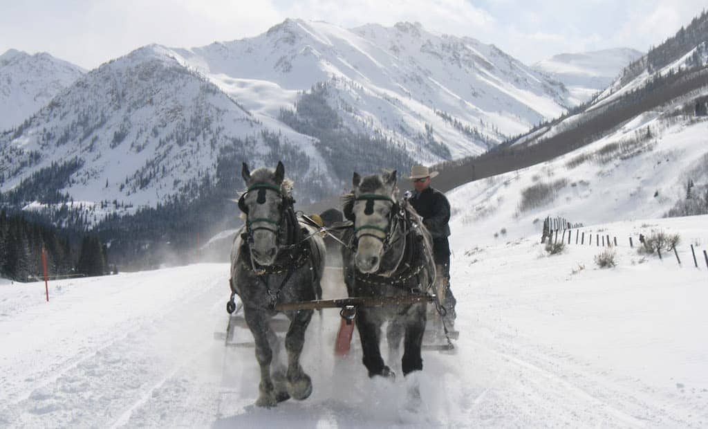 Horse Drawn Sleigh Ride Colorado