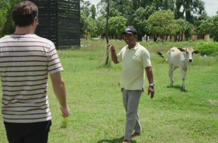 Cambodia Lets Tourists Shoot Cows With Rocket Launchers