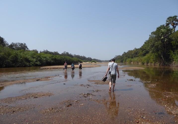 walking and hiking on African safari