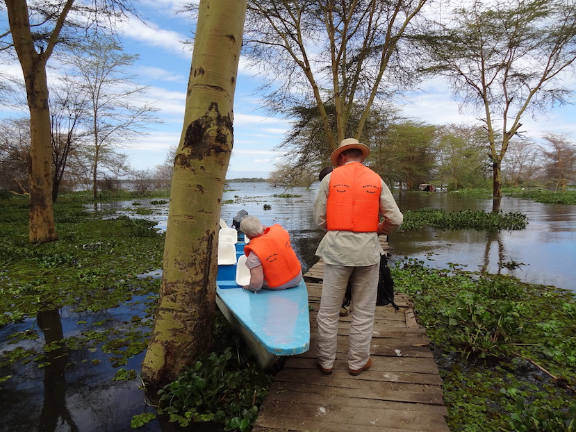 instead of a jeep, take a boat on the river as an alternative for the african safari