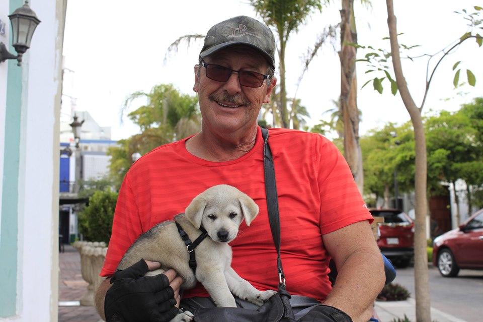 Wheelchair Warren and his dog luna