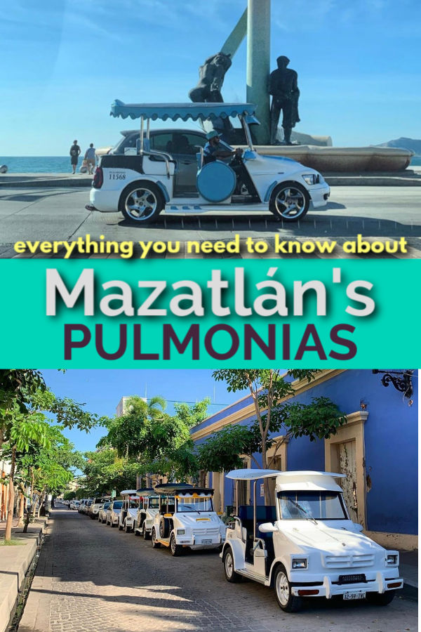 everything you need to know about mazatlan's pullmonias
