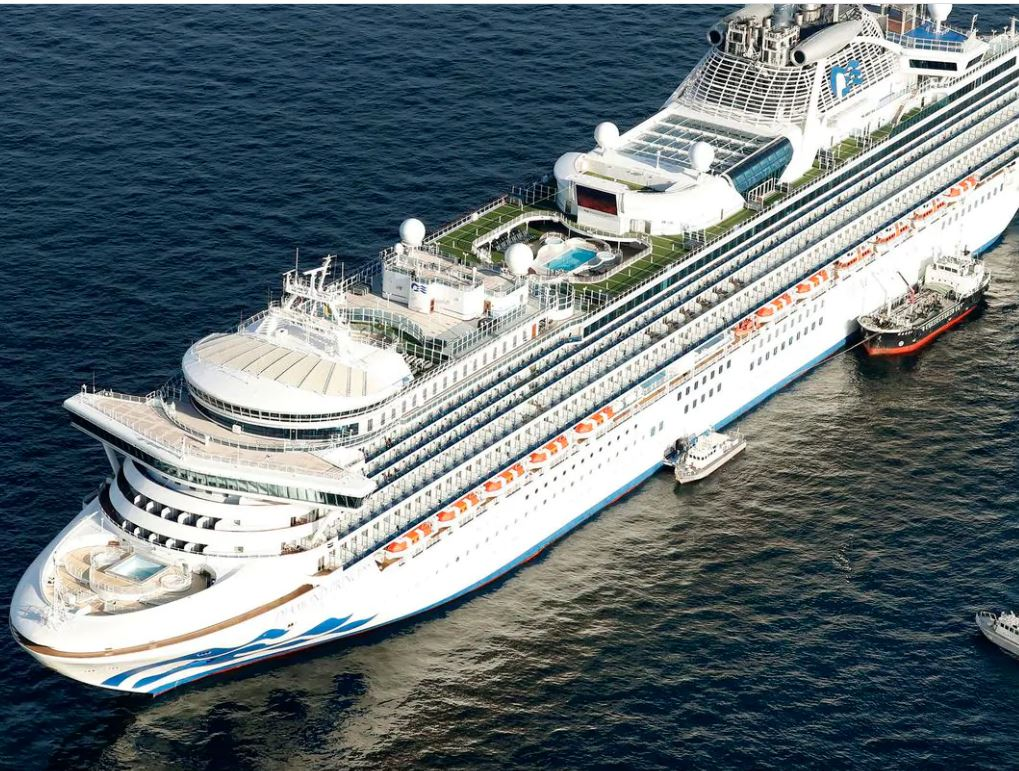ten passengers infected with coronavirus on Diamond Princess cruise ship - The W