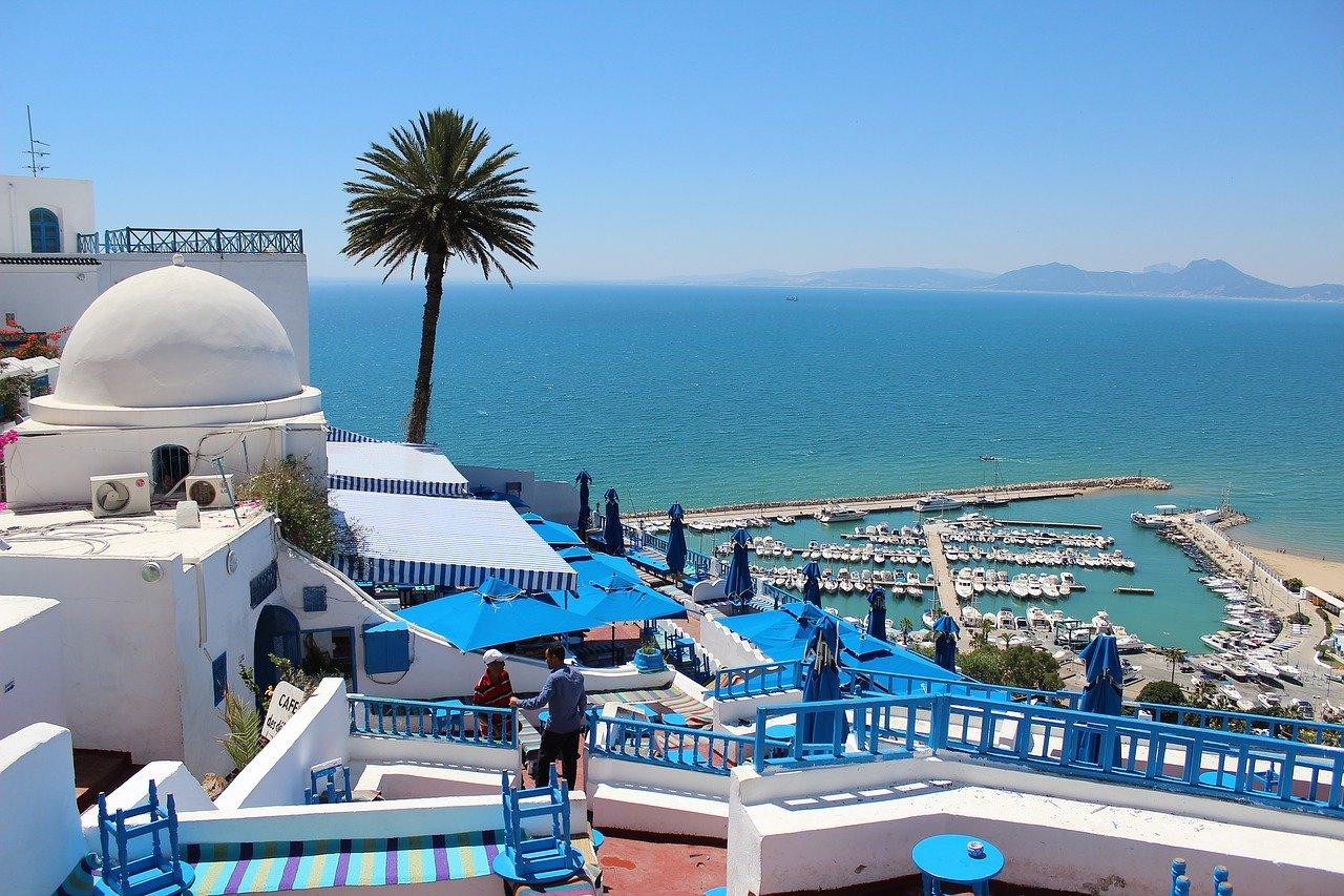 В Тунис будут пускать только со справкой