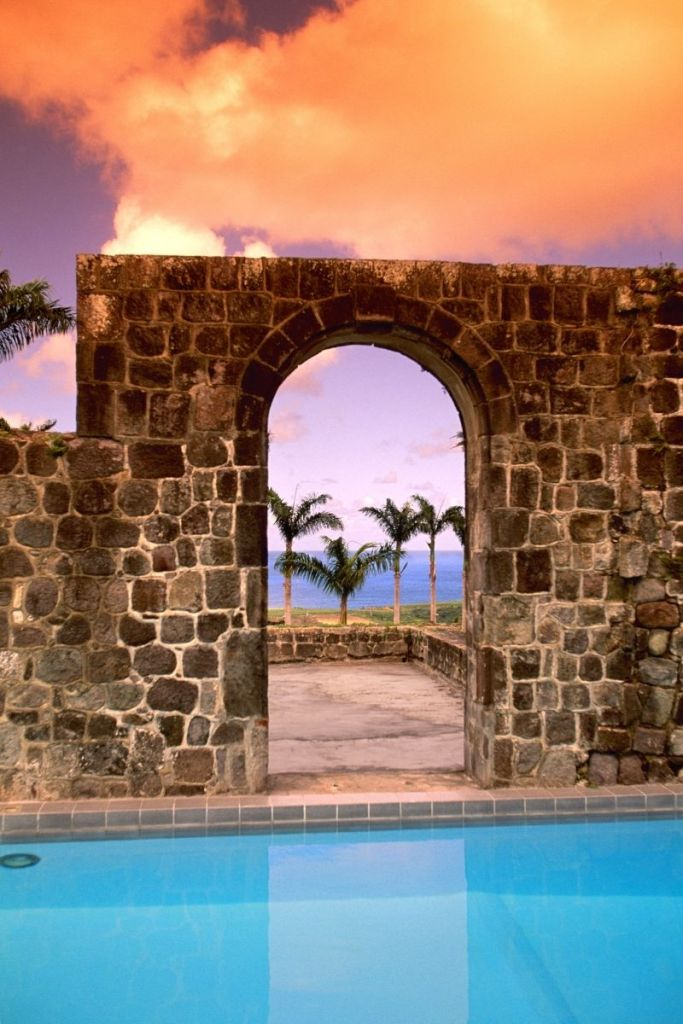 St. kitts and nevis pool and palm treese