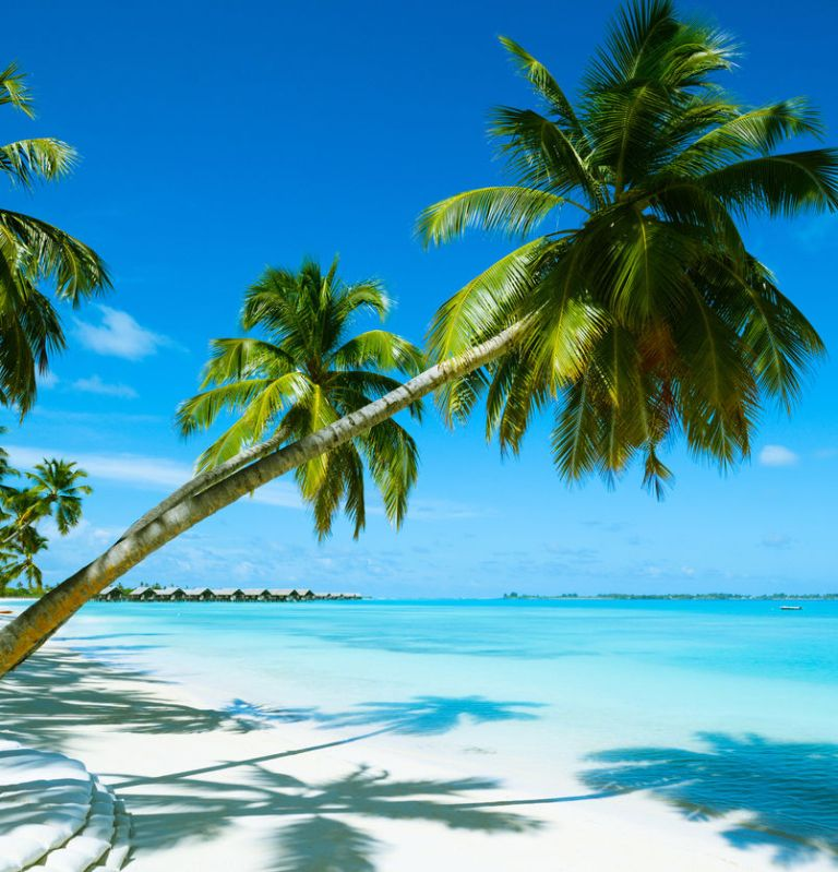 Beach Resort In The Bahamas