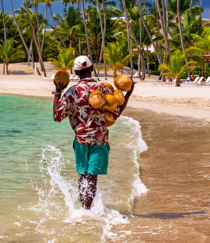 Man with coconuts in dominican republic