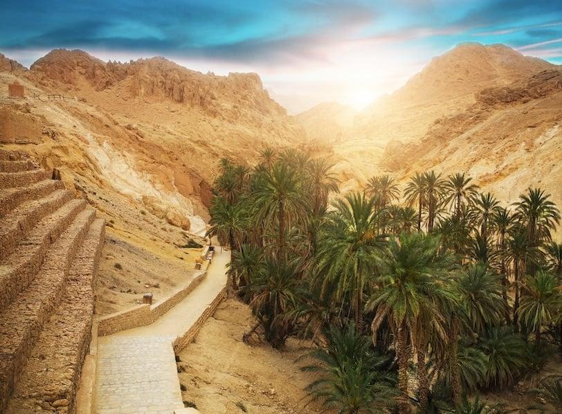 tunisia tourism during covid