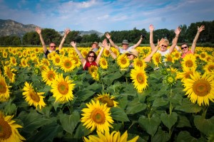 PROVENCE TOUR ITINERARY - Top 4 Must See Places