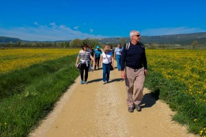 southern france tours Provence guided walking Luberon