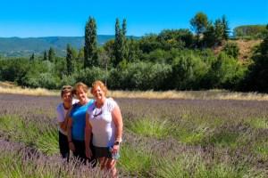 provence-2016-lavender-10
