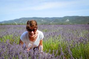 J49-lavender-Sue