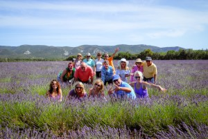 J49-lavender-field-group-2