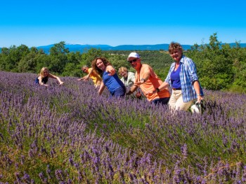 Provence France Tour Itinerary