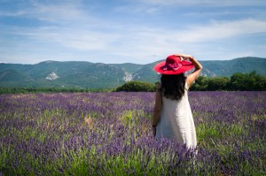 2019 Provence Lavender Season Tour Dates