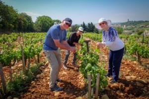 2018-May1-6-Provence-33