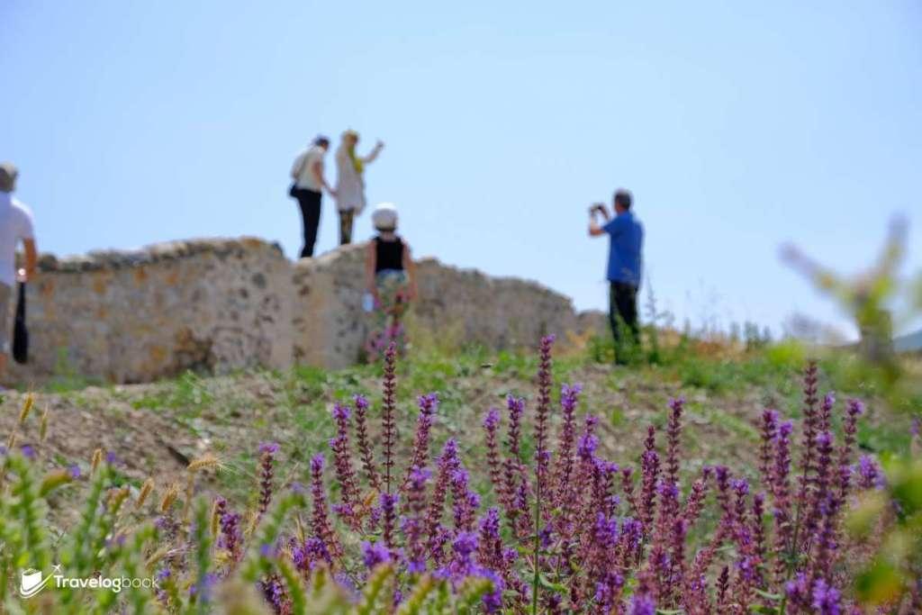 遊人無懼烈日,游走於城牆上拍照。