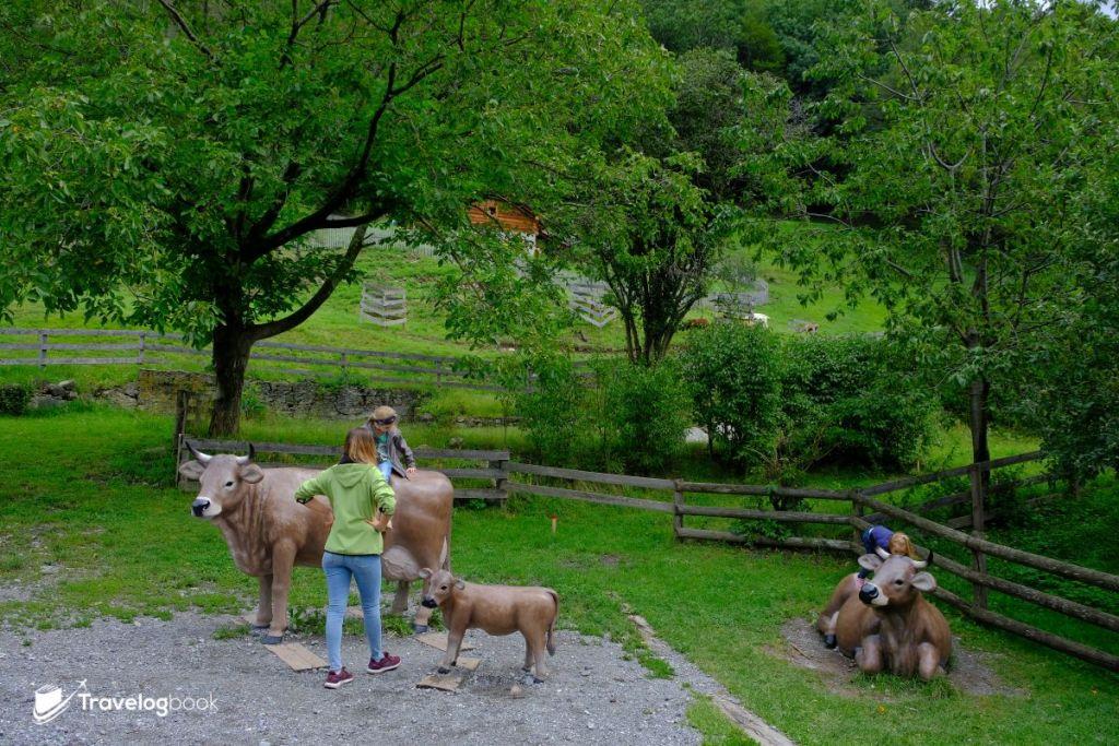 牛牛都是裝飾,想見真牛的話上山後還有機會。