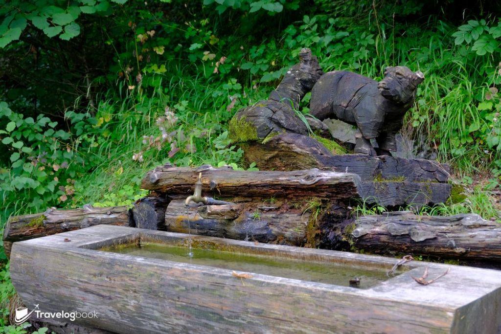 Little Swan和Little Bear是爺爺飼養的小羊,會跟着彼得上山吃草。而這裏則是彼得和羊兒喝水的地方,旅人還可親自嘗一口呢!