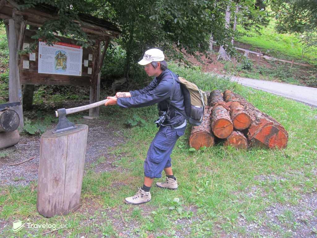 爺爺由於與村民有芥蒂而獨居山上,被稱為「Alm-Uncle」(Alp Uncle), 而這裏便是他採集柴枝以備在冬天生火取暖的地方,如此才不致冷壞了小海迪。這Checkpoint還可讓你擺擺Pose拍個照。