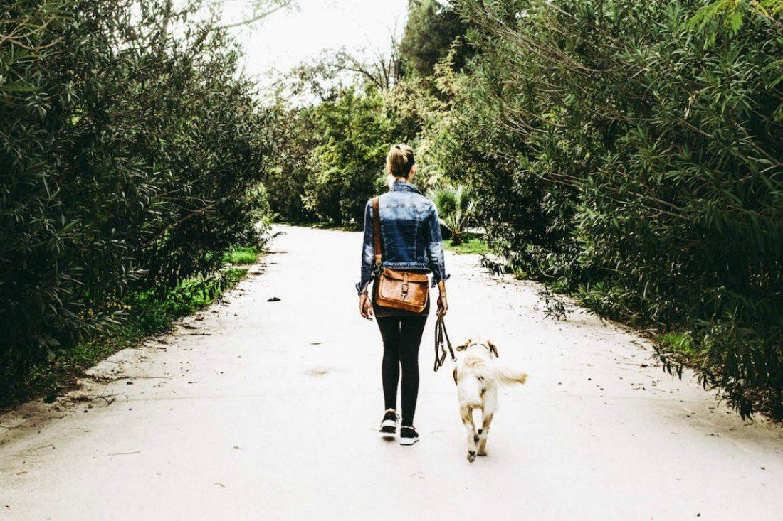 Hondenvakantie in Griekenland
