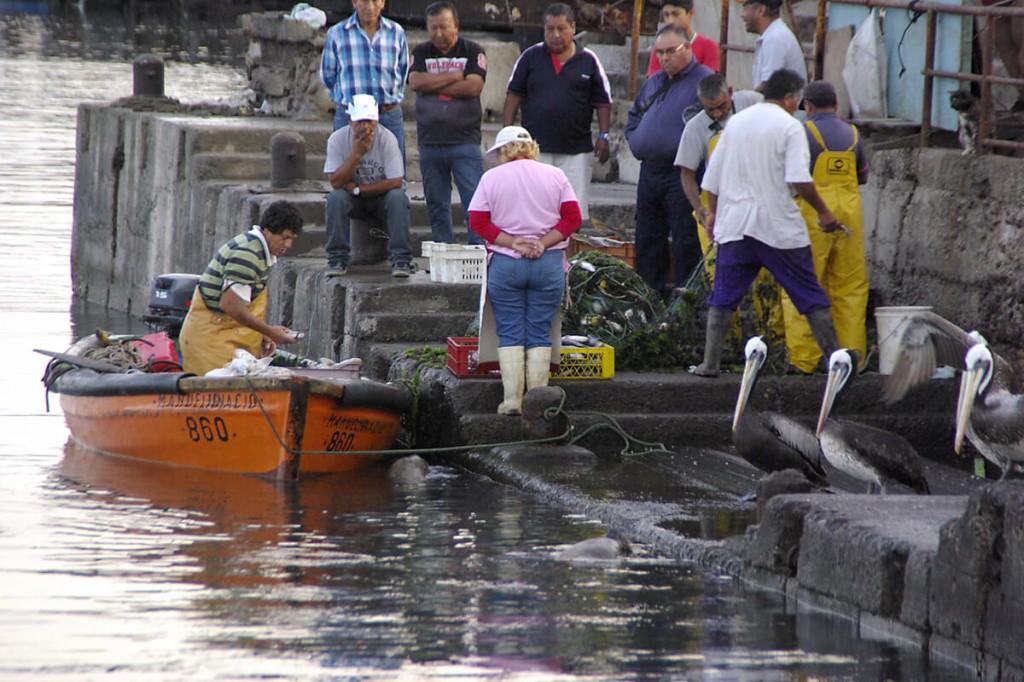 Fischer bei der Arbeit im Hafen von Arica