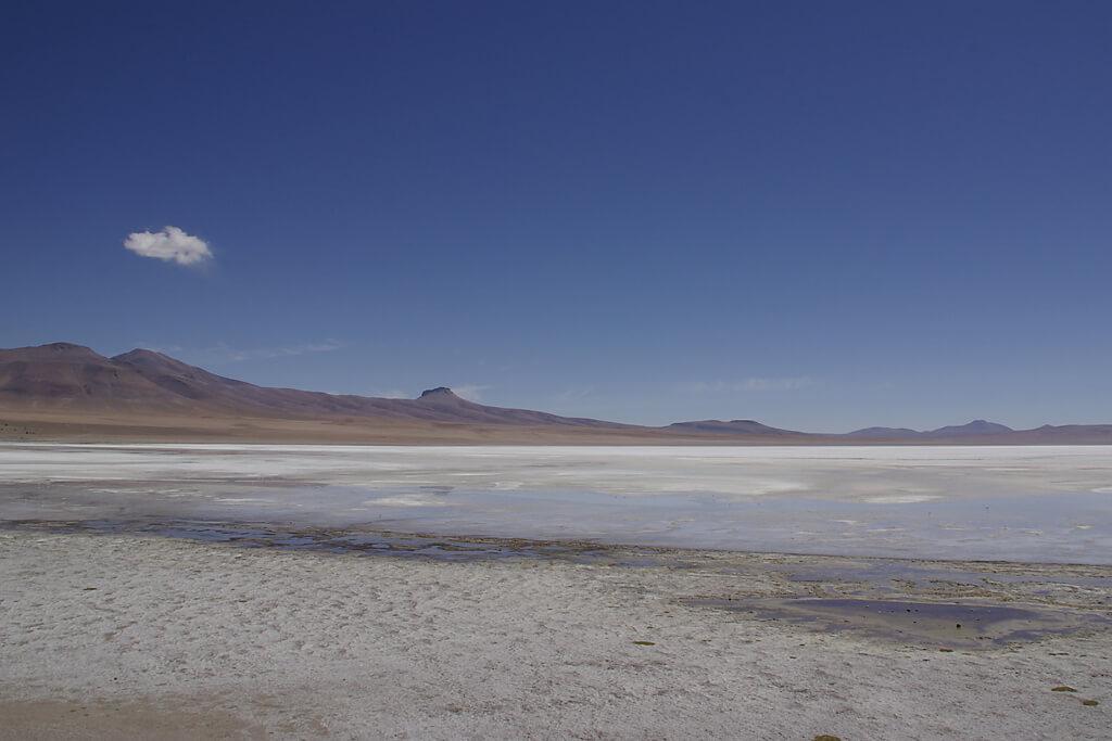 Lagune im Altiplano von Bolivien