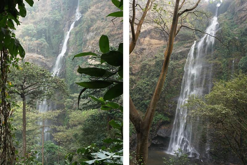 Wli-Falls Track zum Oberen Wasserfall