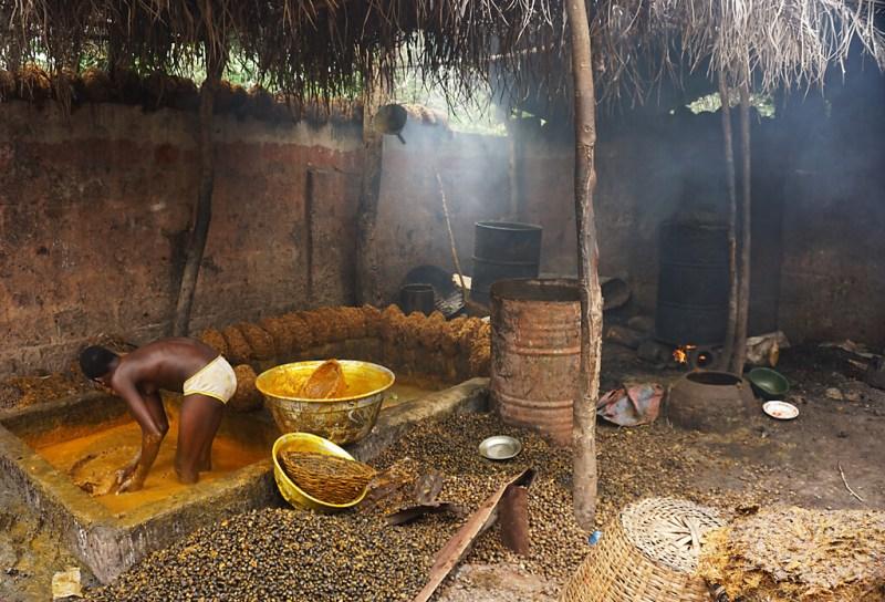 Herstellung von Palmöl in Benin