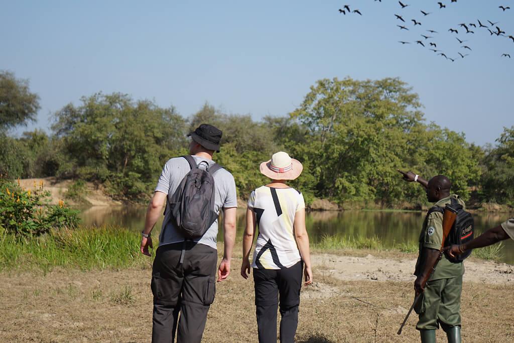 Auf Safari im Mole Nationalpark in Ghana